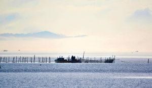 琵琶湖に浮かぶ魞